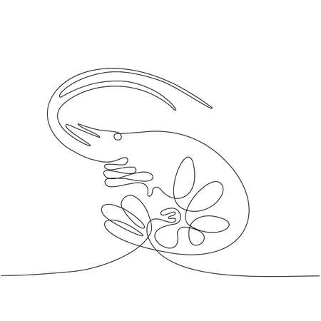Continuous thin line shrimp vector illustration, minimalist seafood sketch doodle for sushi. One line prawn art icon, single sea food outline drawing or unbroken simple design