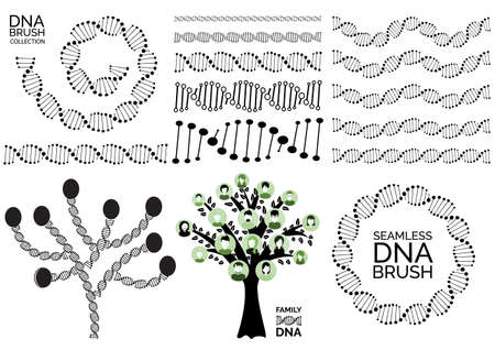 Genealogical family tree with avatars, genealogy tree for dna ancestors. Human dna chain or genome helix vector collection