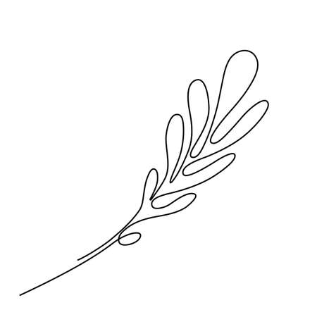One Line Drawing Bay Leaf Twig. Minimal One Line Drawing Palm Tree leaf in Sketch Art Style, Continuous Line Draw, Tropical Illustration