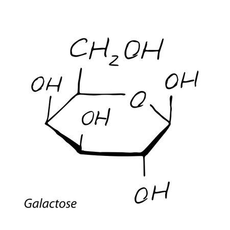 Galactose molecule formula. Hand drawn imitation of Gal monosaccharide sugar structural model. C6H12O6 chemistry skeletal formula, galactose vector icon symbol