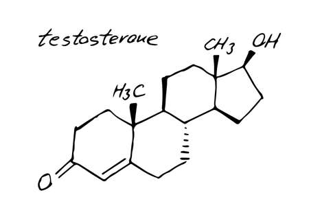 Testosterone molecule formula. Hand drawn imitation of primary sex hormone structural model, anabolic steroidchemistry skeletal formula, vector icon symbol
