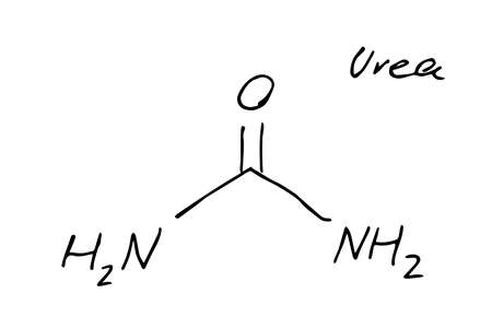 Urea molecule formula. Hand drawn imitation of carbamide structural model, fertilizer urea chemistry skeletal formula, vector sketchy icon 일러스트