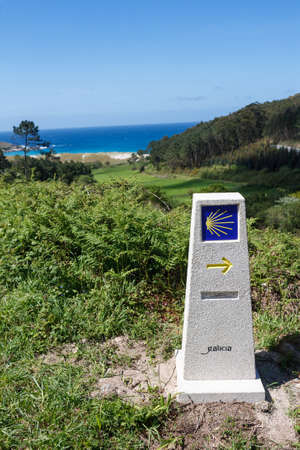 yellow scallop shell signing way to santiago de compostela on pilgrimage route