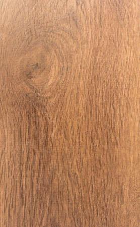 imitation: Oak tree, wood imitation background