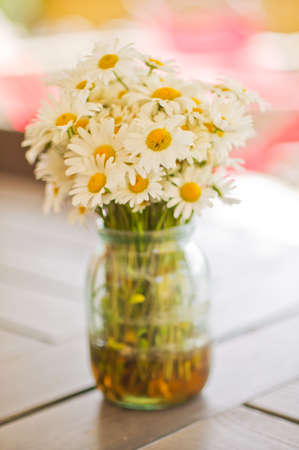 daisy flower: Ox-eye daisy or oxeye daisy Leucanthemum vulgare. English names are common daisy, dog daisy and moon daisy. White blooming flowers in the vase