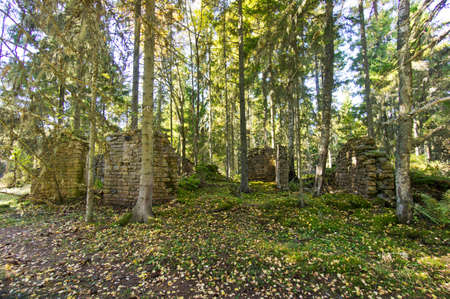 destructed: Ruins of an old manor house in the woods