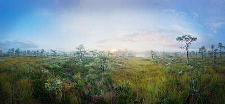 brings: Sunrise on marsh brings fog Stock Photo