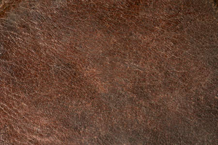 old leather: Grunge brown background. Old leather texture