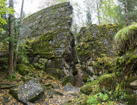 Wolfs Lair,  Adolf Hitlers Bunker in Poland. First Eastern Front military headquarters in World War II. Complex was blown up and abandoned on 1945. Autumn, chaparral grown ruins, trees, leaves.