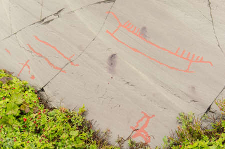 Rock art in Alta Fjord, Norway. Ancient symbols, real drawing,  texture in stone. Red ocher paint. Human preys on animals deer.  Group of petroglyphs, dating from c. 4200 to 500 B.C.
