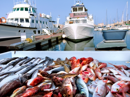 fish market: Fish Market in the Old Port of Marseille. Yachts. Stock Photo