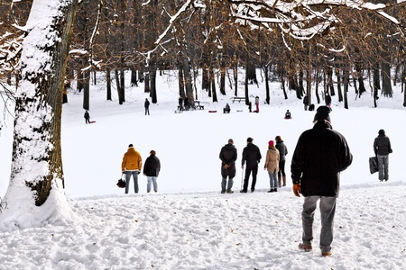 Group of children and adults playing in the snow  Park in the winter  The landscape  photo
