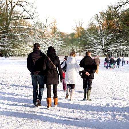 Walking in a winter park  Winter landscape