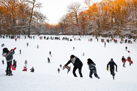 Playing in a winter park. New year. Christmas. photo