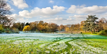 changing seasons: The first snow in the autumn park  Autumn and winter landscape  Panorama