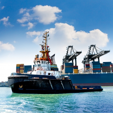 Cargo sea port. Sea cargo cranes. Tug. photo
