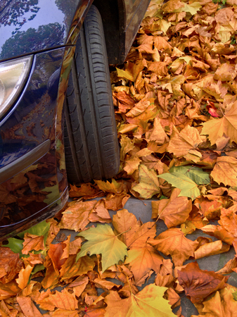 Urban autumn landscape. Car covered with autumn leaves. Autumn background. photo