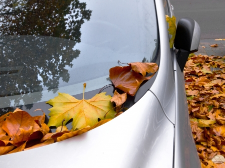 Urban autumn landscape. Car covered with autumn leaves. Autumn background.