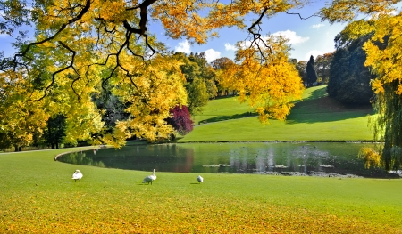 Autumn Landscape. Park in Autumn. The bright colors of autumn in the park by the lake. Standard-Bild