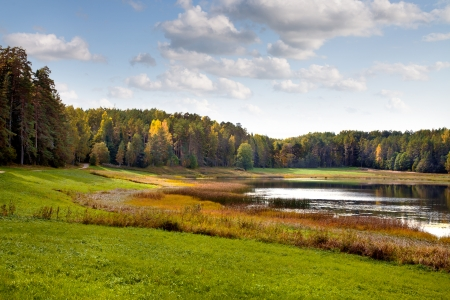 uncultivated: Small Forest Lake. Autumn landscape.