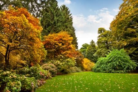 Herfst Landschap. Park in de herfst.