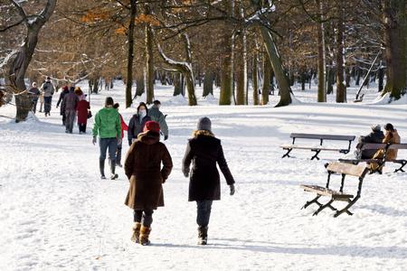 Wandelen in een winter park. Winterlandschap.