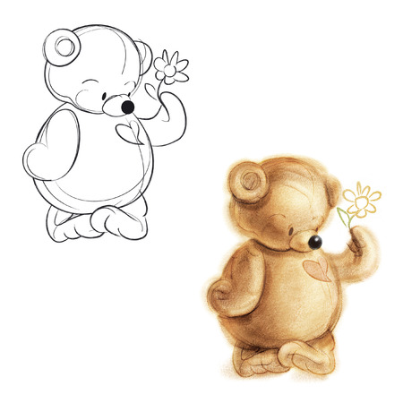 Teddy bear gives a flower. Drawing bear.