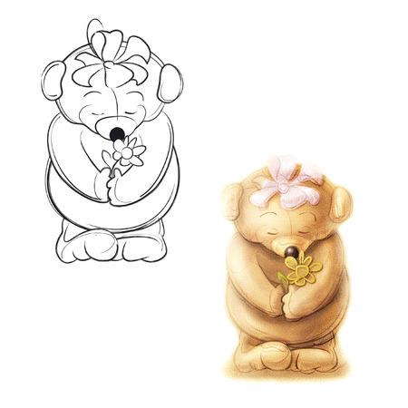 Teddybär gibt eine Blume. Zeichnung Bär.