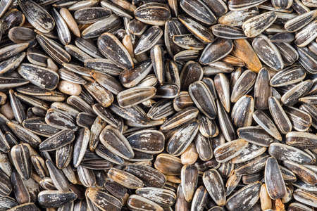 Close-up of striped sunflower seeds in hulls as winter bird food for garden birds