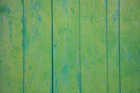 Green vintage painted and grungy wood wall  photo