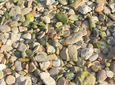Green pebble rocks on a beach, possibly epidote, a common metamorphic mineral or a product of hydrothermal alteration of various minerals  photo