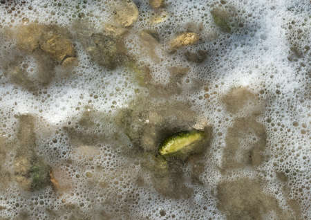 metamorphic: Green pebble rock in sea water with white foam on a beach near Ses Covetes, Majorca, possibly epidote, a common metamorphic mineral or a product of hydrothermal alteration of various minerals