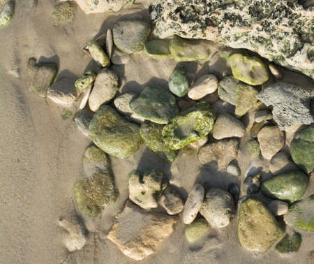 Green pebble rocks on a beach, possibly epidote, a common metamorphic mineral or a product of hydrothermal alteration of various minerals Stock Photo - 24401683