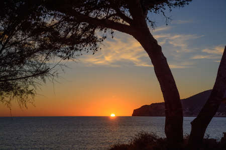 sinks: Tree framing sunset in Sant Elm  Silhouette of a tree framing the sun as it sinks below the horizon in early November  Sant Elm, Mallorca, Balearic islands, Spain  Stock Photo