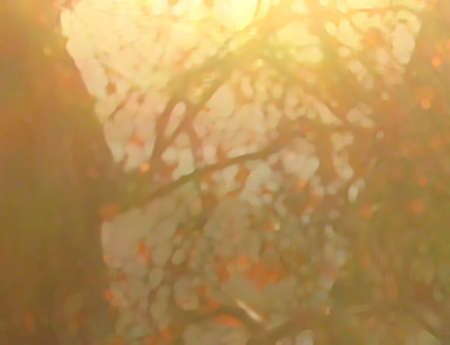 sun drenched: Backlit red leaves in sun drenched landscape, digital painting.