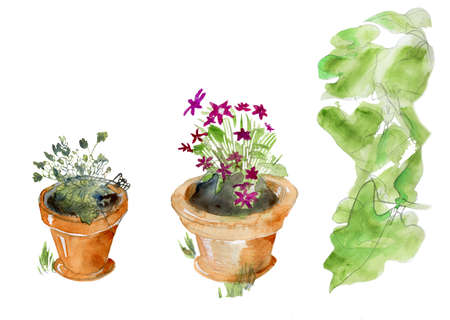 terracotta: Isolated garden pots, original watercolor sketch, three parts, isolated on white.