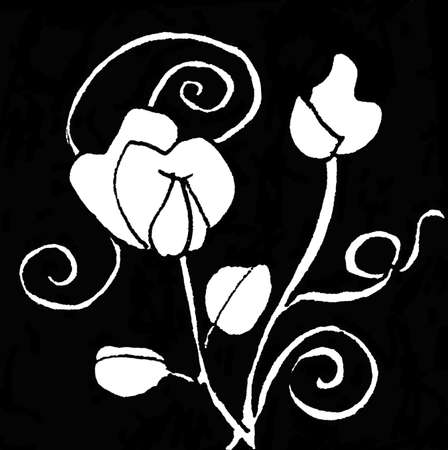 Ink Pattern Seven, abstract pattern, black and white ink sketch. Sweet pea spirals. photo