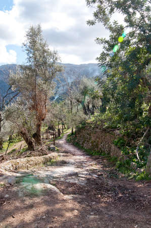walking path: Walking path Soller