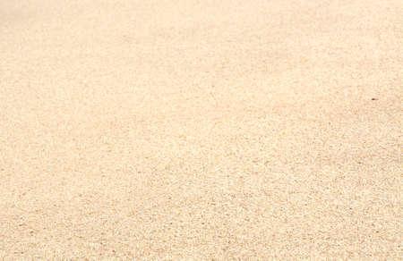 southern sri lanka: Sand background selective focus. Sand on a tropical beach, Southern province, Sri Lanka, Asia.