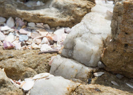 calcite: Calcite vein in rock at Rocky Point, Tangalle, Southern Province, Sri Lanka, Asia. Stock Photo