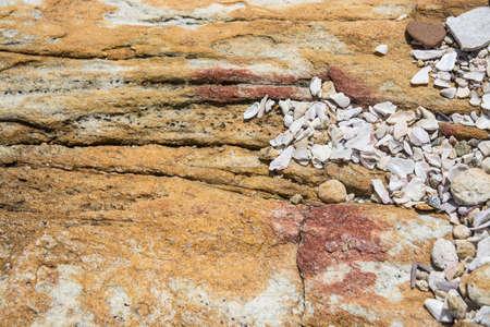 southern sri lanka: Rock background texture. Metamorphic rock with interesting natural pattern, Southern Province, Sri Lanka, Asia.