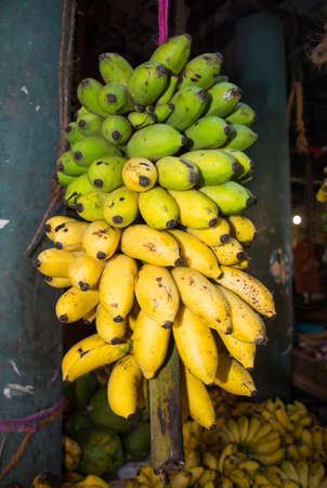 southern sri lanka: Green and yellow bananas in the Tangalle market, Southern Province, Sri Lanka, Asia.