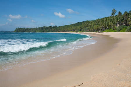 southern sri lanka: Sandy paradise beach with coconut palms, golden sand and emerald green water on the edge of Indian Ocean, Southern Province, Sri Lanka, Asia. Stock Photo
