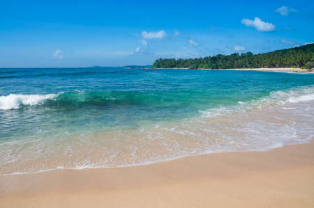 southern indian: Green wave on sandy paradise beach with coconut palms, golden sand and emerald green water on the edge of Indian Ocean, Southern Province, Sri Lanka, Asia. Stock Photo
