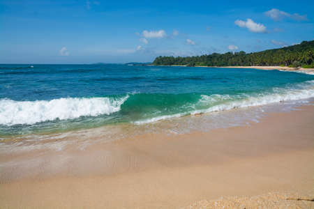 southern sri lanka: Green wave on sandy paradise beach with coconut palms, golden sand and emerald green water on the edge of Indian Ocean, Southern Province, Sri Lanka, Asia. Stock Photo