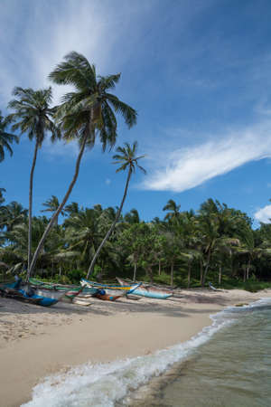 rocky point: Sri Lankan fishing boats on sandy beach with coconut palm trees. Rocky Point, Tangalle, Southern Province, Sri Lanka, Asia.