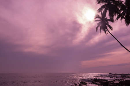 Small fishing boat in tropical ocean landscape with horizon and coconut palms in violet pink color filter. photo