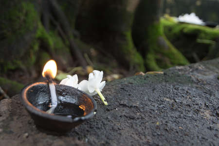 Flowers and oil burning. Ceremonial flowers and oil burning arrangement, Sri Lanka, Asia.