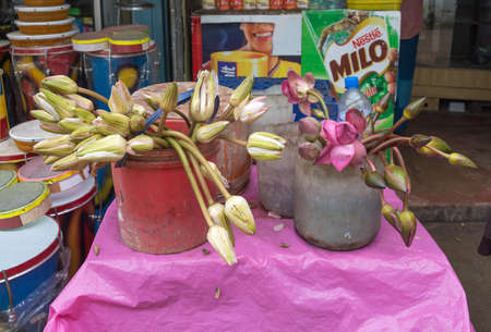 wewurukannala: DICKWELLA, SOUTHERN PROVINCE, SRI LANKA - DECEMBER 20 2014: Lotus flower buds for sale in a store outside buddhist monastery Wewurukannala Vihara on December 20 2014, Dickwella, Southern Province, Sri Lanka, Asia. Editorial