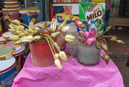 DICKWELLA, SOUTHERN PROVINCE, SRI LANKA - DECEMBER 20 2014: Lotus flower buds for sale in a store outside buddhist monastery Wewurukannala Vihara on December 20 2014, Dickwella, Southern Province, Sri Lanka, Asia. Editorial